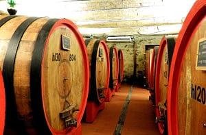 Carpineto -Brunello di Montalcino