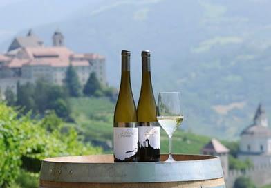 Cantina Valle Isarco: i grandi vini bianchi del Nord