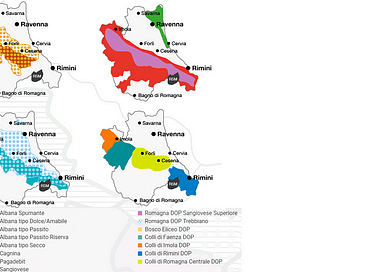 I migliori vini della ROMAGNA secondo l'AIS