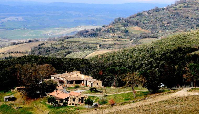 Carpineto - Brunello di Montalcino