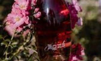 Vini Prosecco - Rosè
